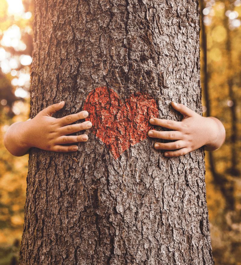 Abbraccia Chi Sei è l'espressione che ho scelto per definire il mio approccio di Counseling e la consapevolezza più importante del mio percorso professionale e personale: solo dall'abbraccio di noi stessi possiamo cambiare.
